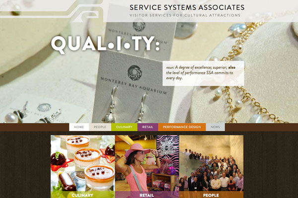 Service Systems Associates Site